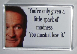 Robin Williams Quote movie poster fridge magnet