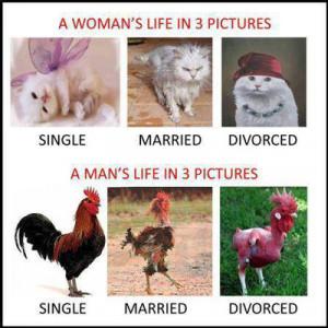 Funny Divorce