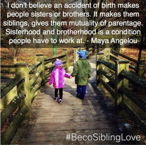 Sibling love- respecting it, working for it, and preserving it