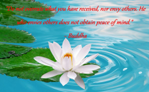 """... . He who envies others does not obtain peace of mind."""" – Buddha"""