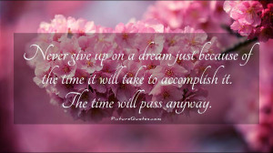 give up on a dream just because of the time it will take to accomplish ...