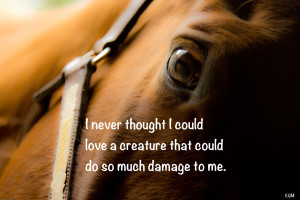Fluttershy (Character) - Quotes equestrian-quotes-pinterest Clinic