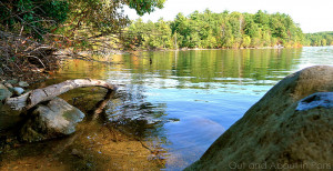 went to the woods...Reading Henry David Thoreau at Walden Pond