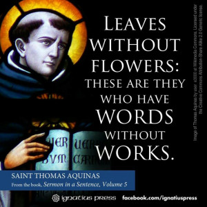 St. Thomas Aquinas quotes. Catholic
