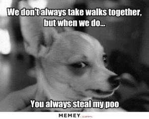 You Always Steal My Poo