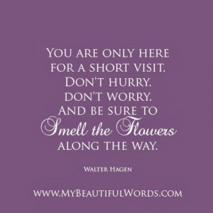 Smell the Flowers Along the Way...