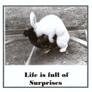 Life is full of surprises-vintage photo and quote
