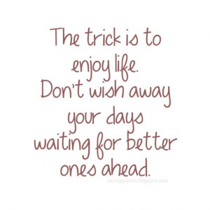 The Trick Enjoy Life Dont