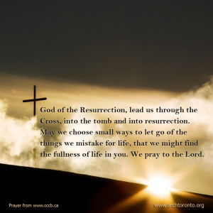 Prayer for the Fourth Sunday of Easter