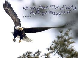allama iqbal s poetry the effect of the thoughts of allama iqbal which ...
