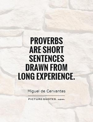 Experience Quotes Proverb Quotes Miguel De Cervantes Quotes