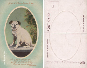 Friday August 26 2011. Sympathy Cards For Loss Of Dog . View Original ...