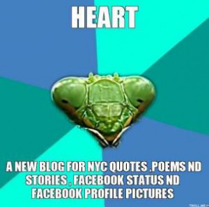new-blog-for-nyc-quotes-poems-nd-stories-facebook-status-nd-facebook ...
