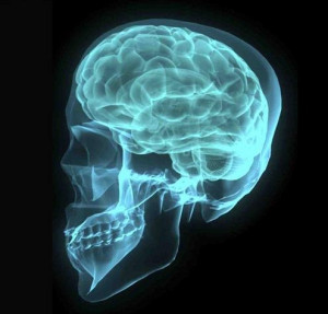 Cell overuse can cause brain cancer