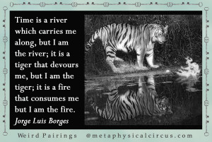 ... am the tiger; it is a fire that consumes me, but I am the fire