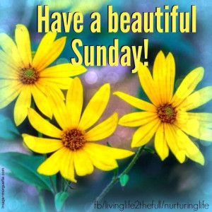 Have A Beautiful Sunday Pictures, Photos, and Images for Facebook ...