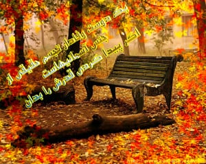 Autumn Quotes And...