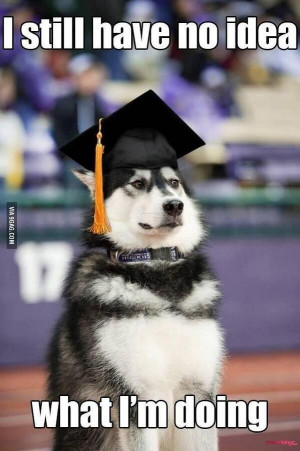 funny high school graduation quotes image which coming from media ...