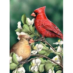 wild_cardinals_greeting_cards_pk_of_10.jpg?height=250&width=250 ...