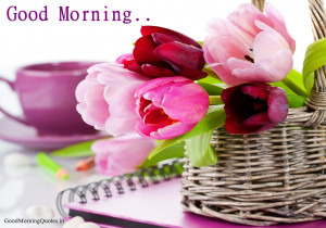 Lovely Tulips Good Morning HD Wallpaper Beloved