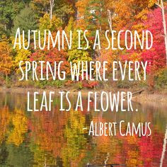 fall #autumn #quotes #nature #leaves #beauty #outdoors #garden # ...