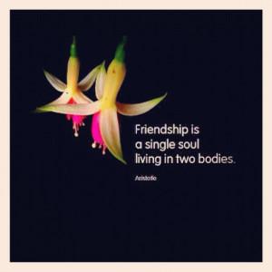 friendship # quotes # instagram # instagood # instamood taken with ...