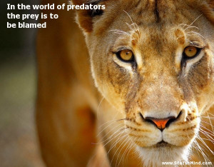 the world of predators the prey is to be blamed - Quotes and Sayings ...