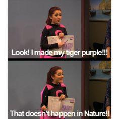 ... purple tigers cat valentine makeup ariana grand funny victory cat