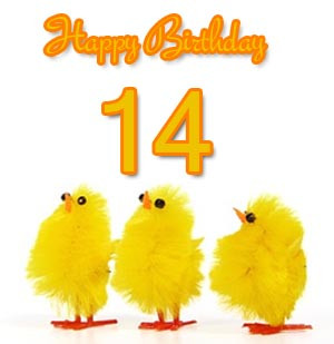 the 14th birthday is a very important day for a teenager you can ...