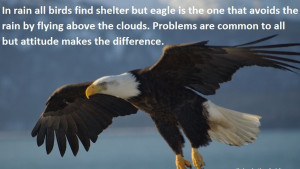 ... com pictures quotes sayings be an eagle and soar above the clouds 418