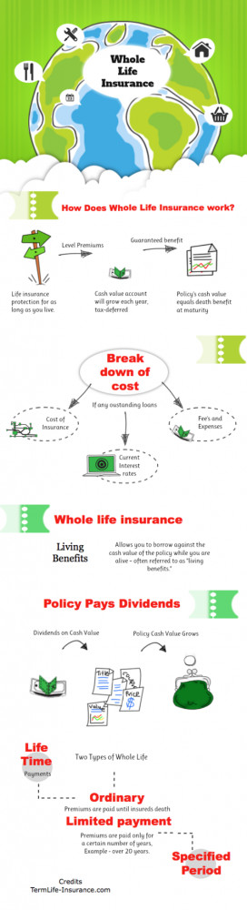 life quotes life insurance