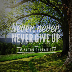 yourself with this Never Never Never Give Up Winston Churchill Quote ...