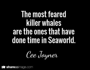 The most feared killer whales are the ones that have done time in ...