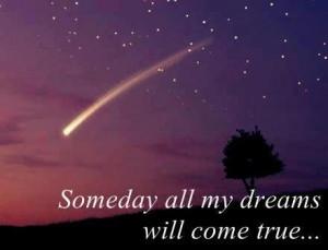 dream world live your dream broken star wish