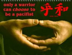 Kickboxing quotes   martial arts quotes and sayings martial arts ...
