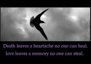 Bird_in_Flight+Quote.jpg