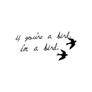 "The Notebook. ""If you're a bird, I'm a bird."" #quotes ….hmmm ..."