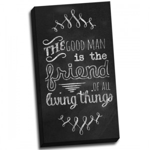 Chalk Quotes on Canvas: Friends of Living Things