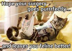 Surgery humor More
