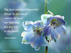 Best and Most Beautiful things In the World Cannot be seen ~ Flowers ...