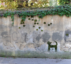 The Jean Cocteau's cat, Moss graffiti. Jeans Cocteau