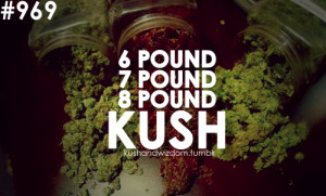 ... quote quotes weed quote weed quotes pothead potheads kush weed
