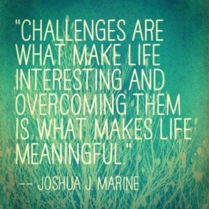 Challenges are what make the life interesting and overcoming them is ...