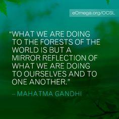 ... quotes fav quotes hinduism quotes mahatmagandhi mahatma gandhi quote