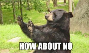 how about NO meme bear Imgur
