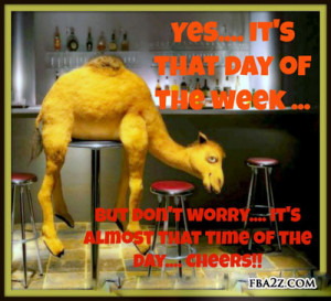 humpday quotes humpday pictures hump day pictures for fb humpday