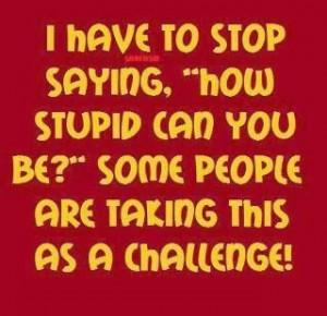 The Stupid Challenge!