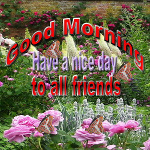 Good Morning To All Friends