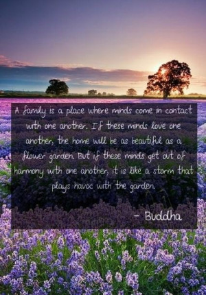 Best buddha quotes and sayings people family harmony