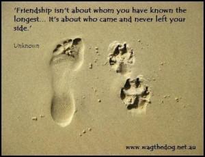 love my dog.: Footprints, True Friendship, Dogs Quotes, Best Friends ...